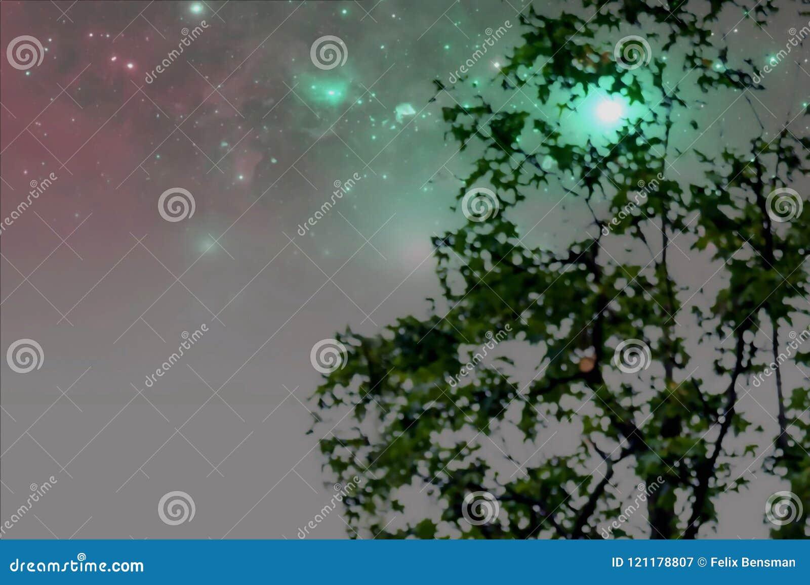 Samenvatting vaag beeld van groene gebladerteachtergrond