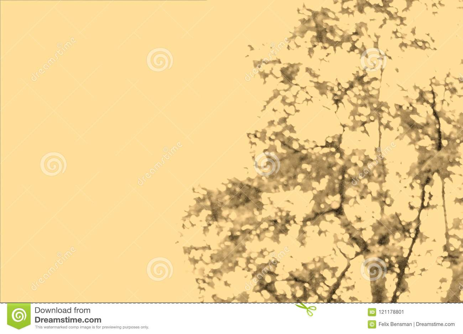 Samenvatting vaag beeld van groene gebladerteachtergrond met oud