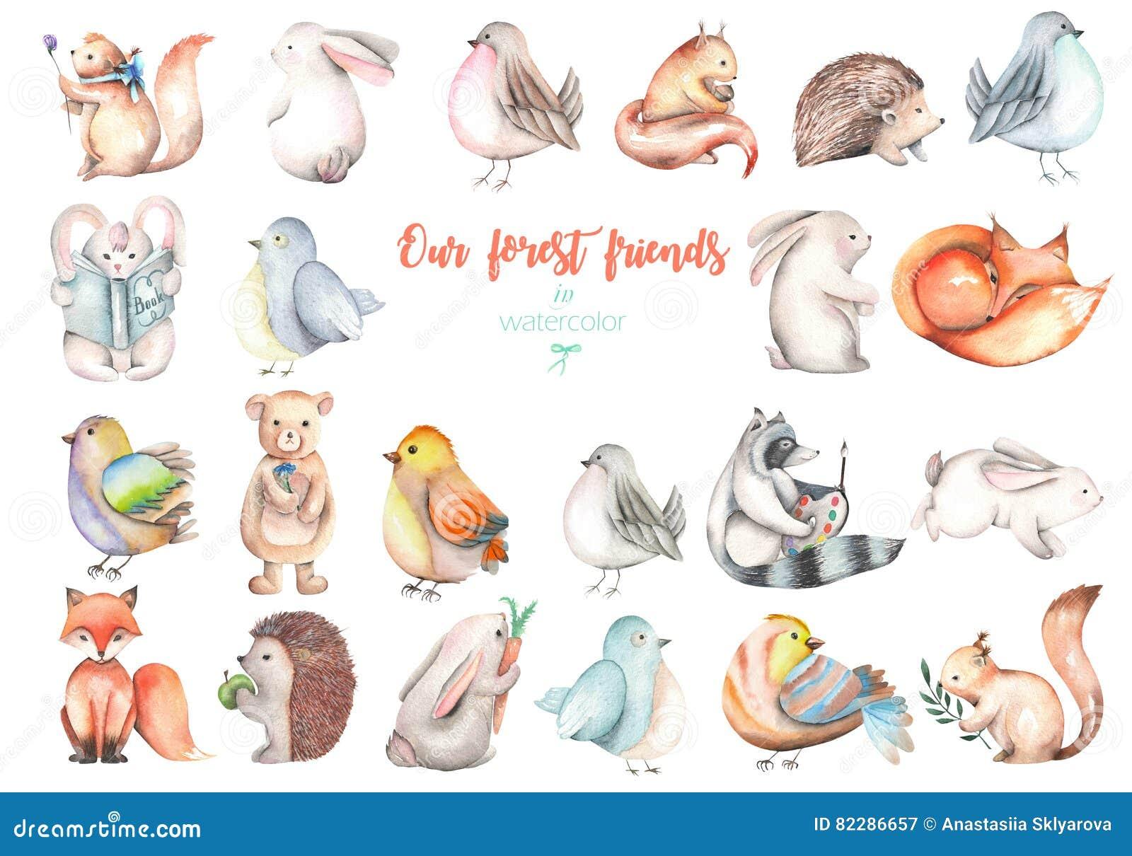 Samling uppsättning av för skogdjur för vattenfärg gulliga illustrationer