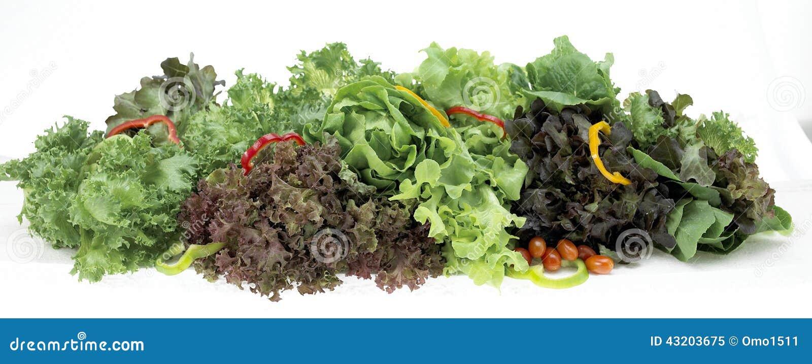 Download Samlingsgrönsaker Som Isoleras På En Vit Bakgrund Fotografering för Bildbyråer - Bild av pipblåsare, closeup: 43203675