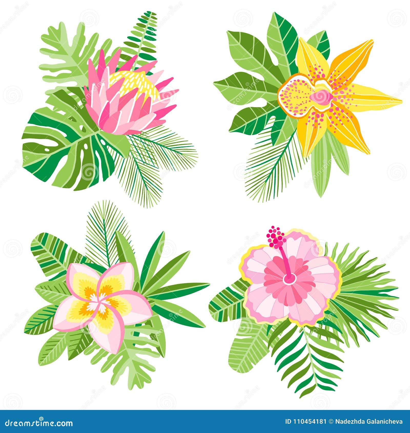 Sammansättning för blommor för palmblad för vektorvattenfärgdjungel