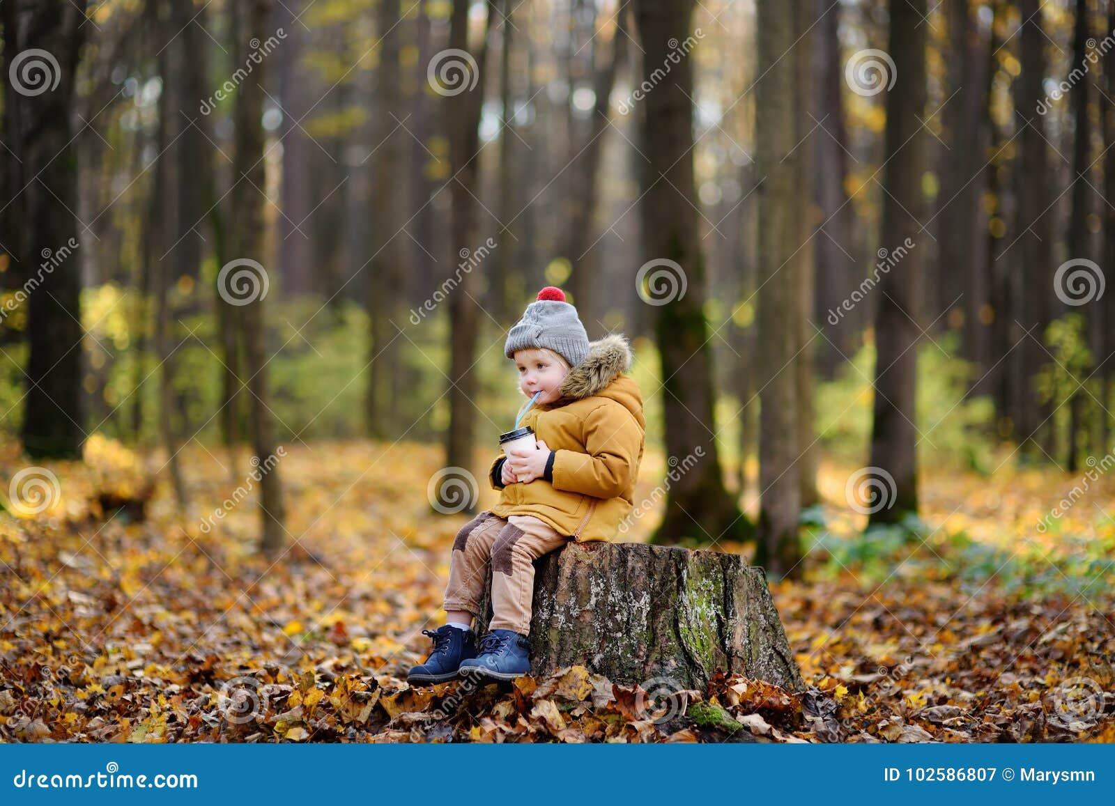 Sammanträde för litet barn på trästubbe och dricka varm kakao under promenad i skogen på höstdagen