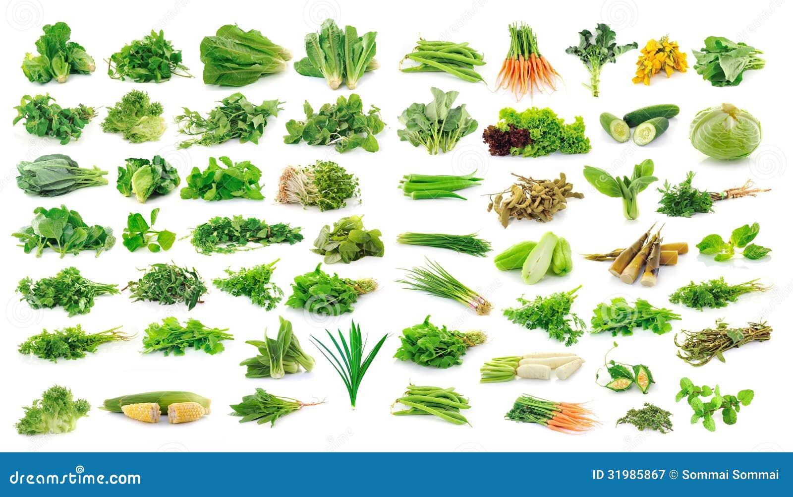 Sammlung Obst und Gemüse