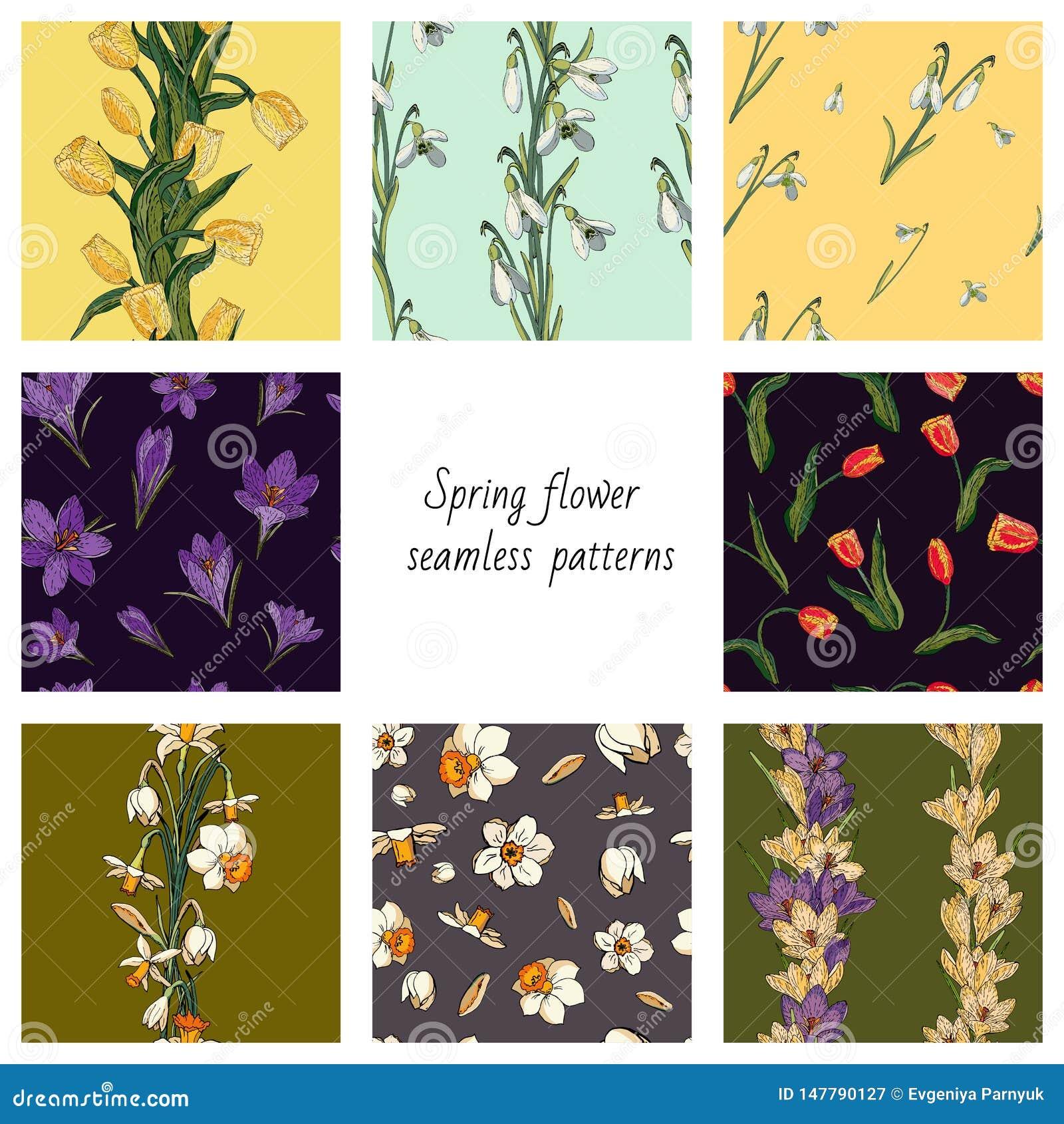 Sammlung von 8 nahtlosen Mustern des Vektors Farbmit Frühlingsblumen Beschaffenheiten mit Tulpen, Krokussen, Schneeglöckchen und