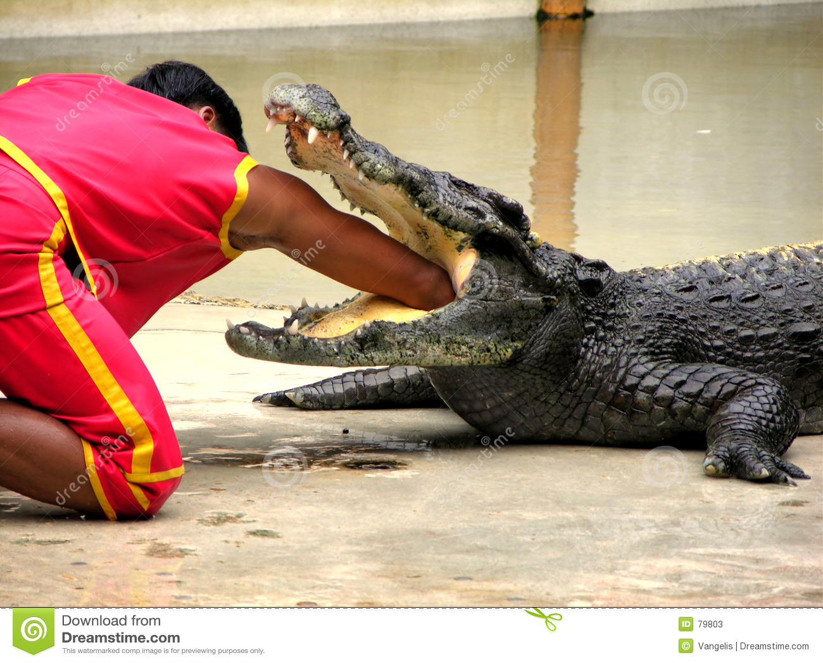 Samutprakan Crocodile Farm and Zoo 5