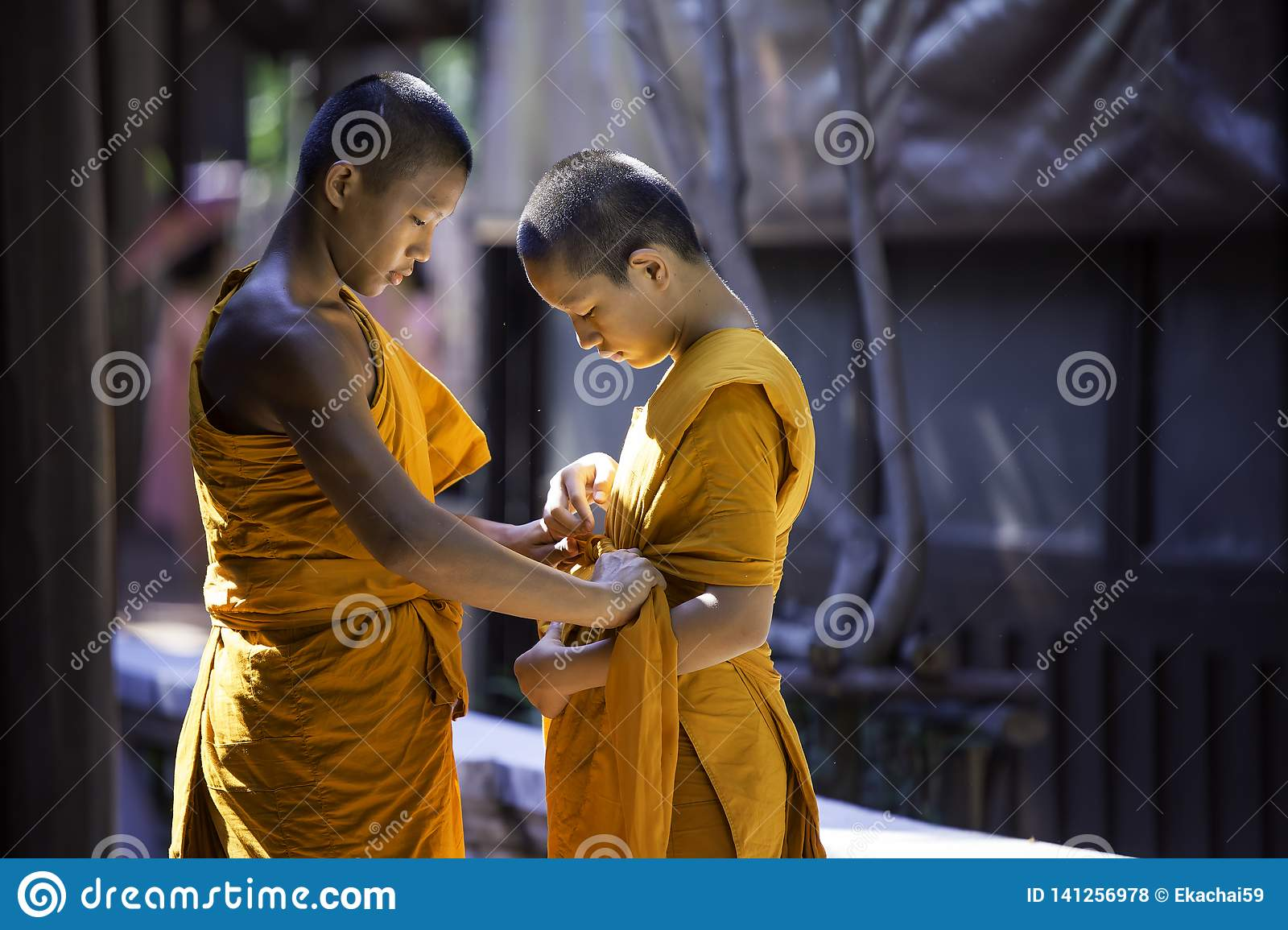 Two novices are helping to cover the robes.