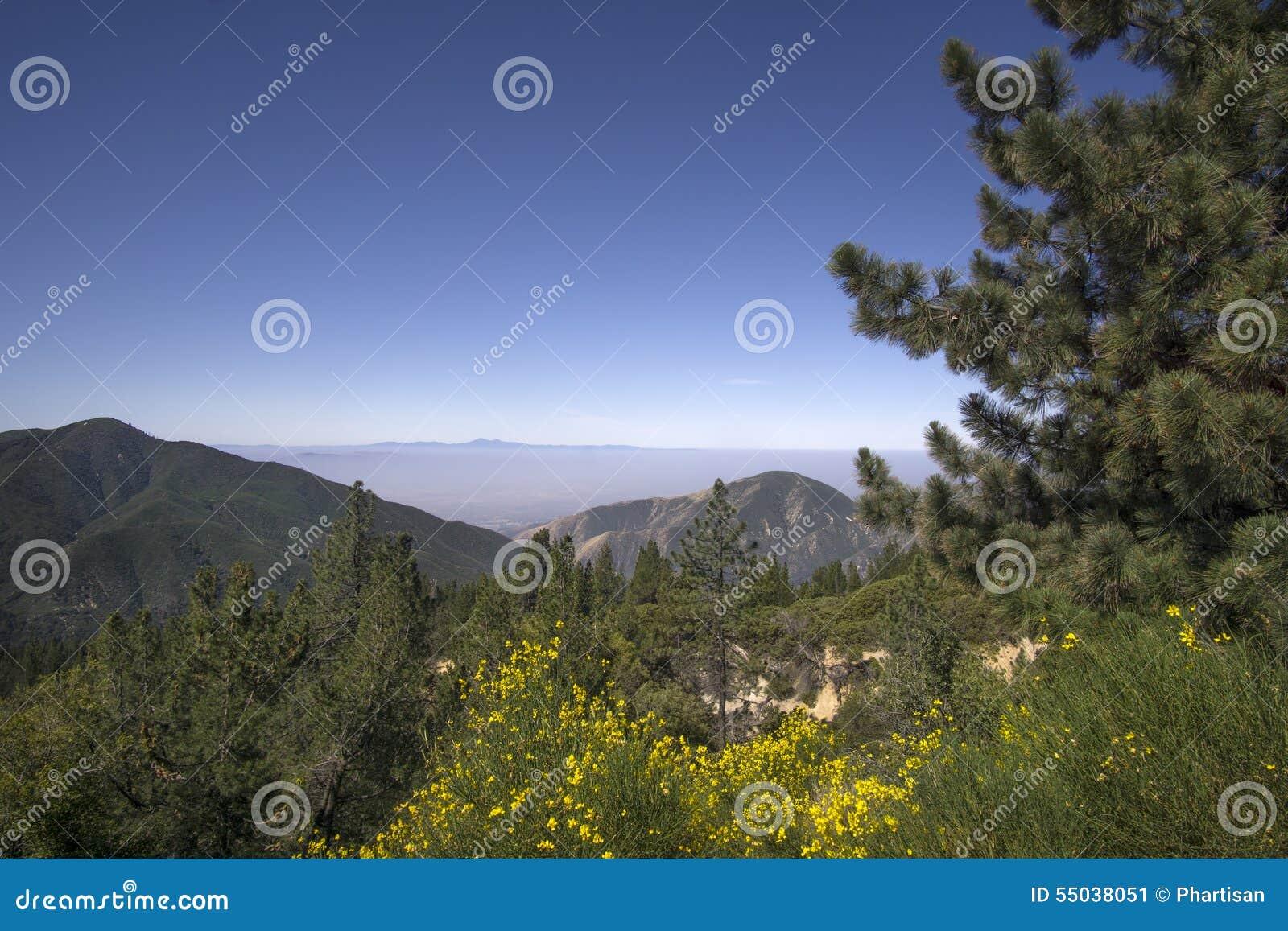 San Bernardino National Forest, Ca, de V.S. dichtbij Groot Beermeer