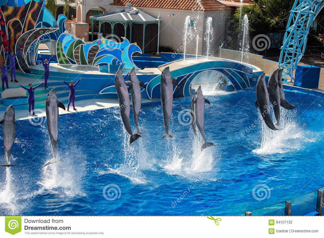 San diego usa november 15 2015 the dolphin show at for Pool show orlando 2015