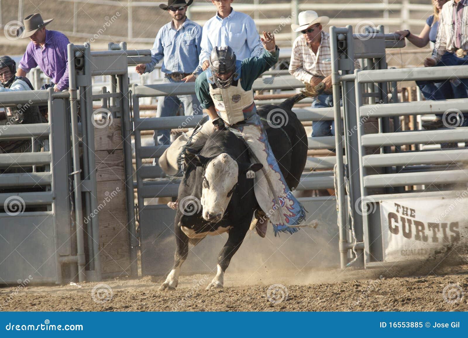 San Dimas Bull Riding Editorial Image Image Of Equestrian