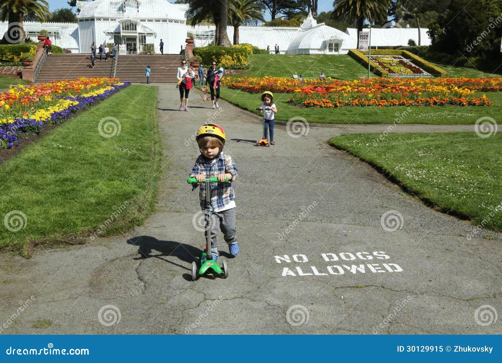 De families genieten van zonnige dag bij het Park van het Golden Gate in San Francisco