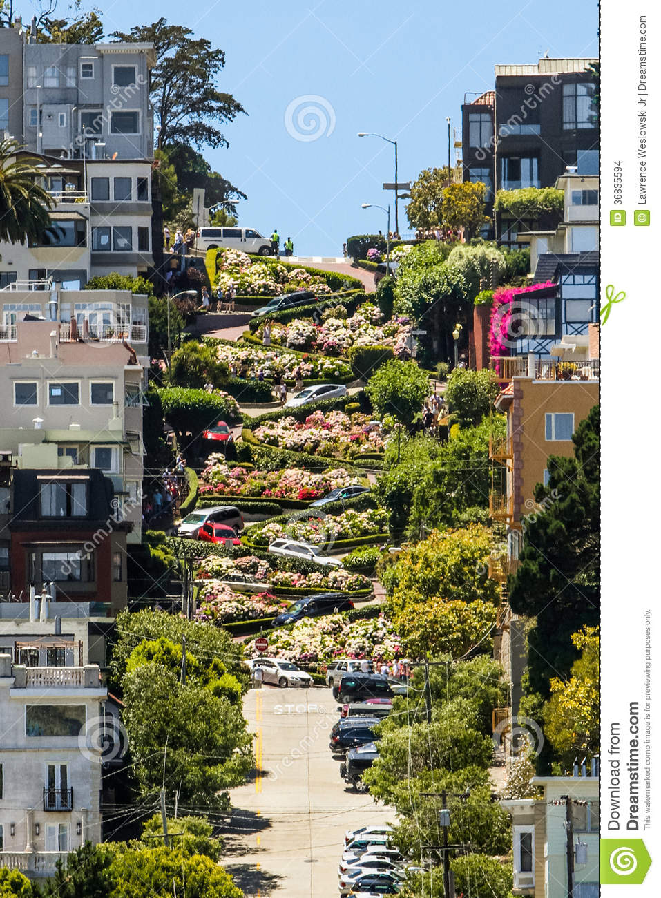 Assez San Francisco Lombard Street 8 Hairpin Turns Editorial Stock Image  VJ35