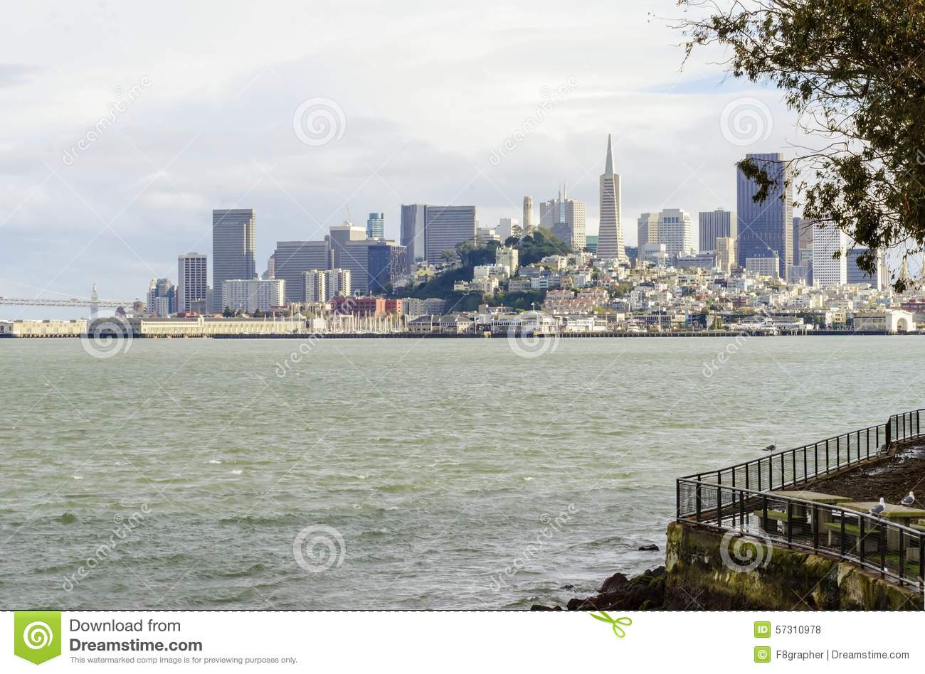 San Francisco (CA) United States  city photo : The San Francisco skyline in California, United states of America from ...