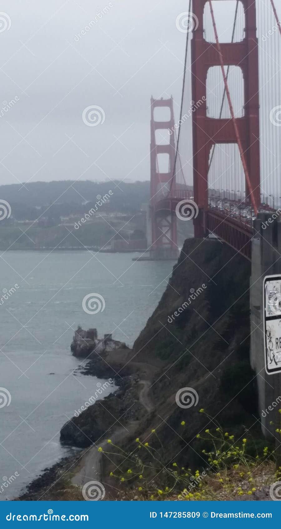 San Fransisco most