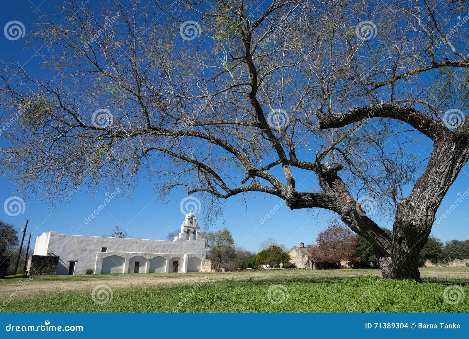 SAN Juan misson στο antonio Τέξας SAN που ένα μεγάλο δέντρο