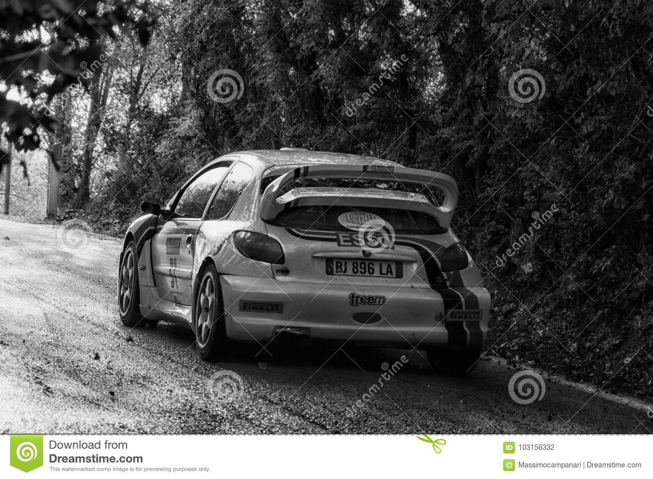 PEUGEOT 206 WRC 1999 In Old Racing Car Rally THE LEGEND 2017 ...