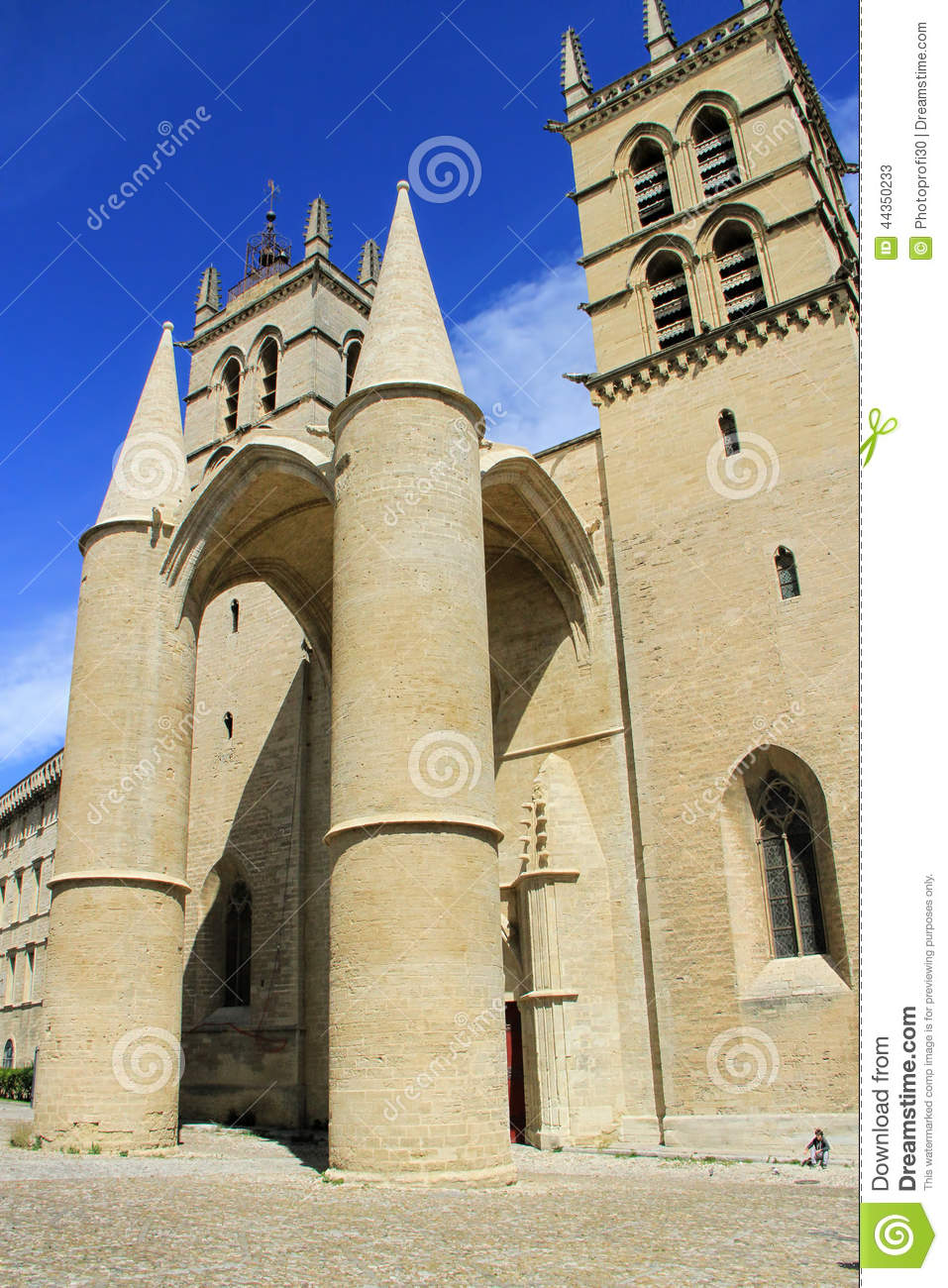 San Pierre Cathedral, Montpellier, Francia