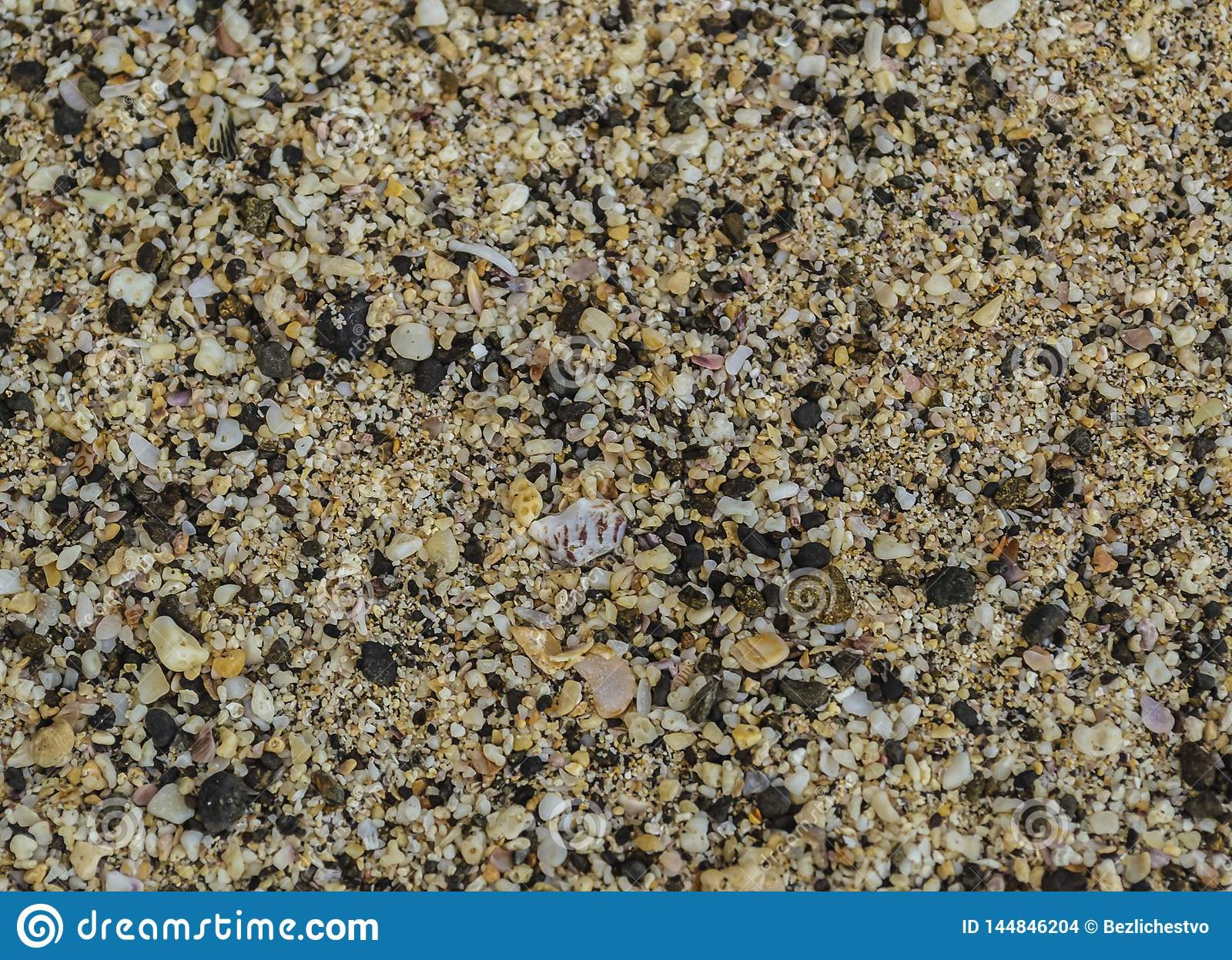 Sand beach texture with shells and small pebbles close-up
