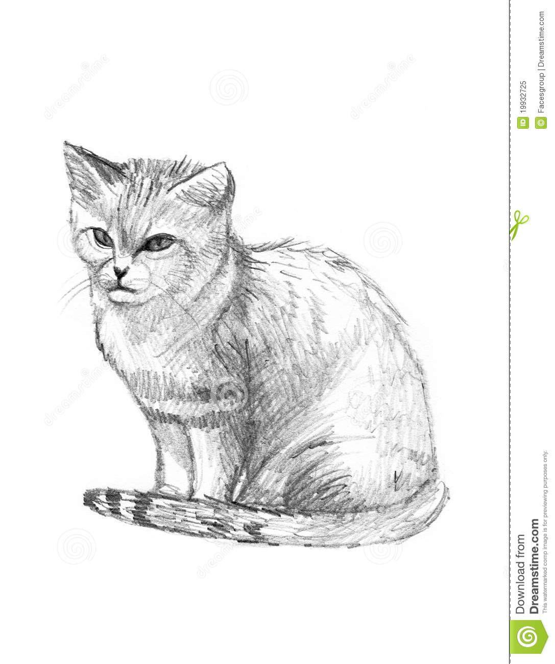 Sand Cat Drawing Sketch Royalty Free Stock Photo - Image: 19932725