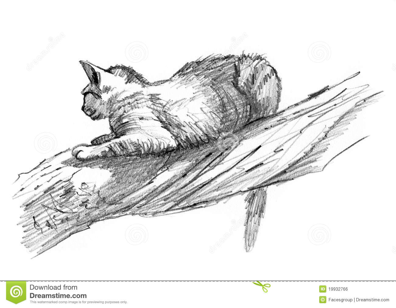 Sand Cat Drawing Sketch On A Tree Royalty Free Stock Image Image 19932766