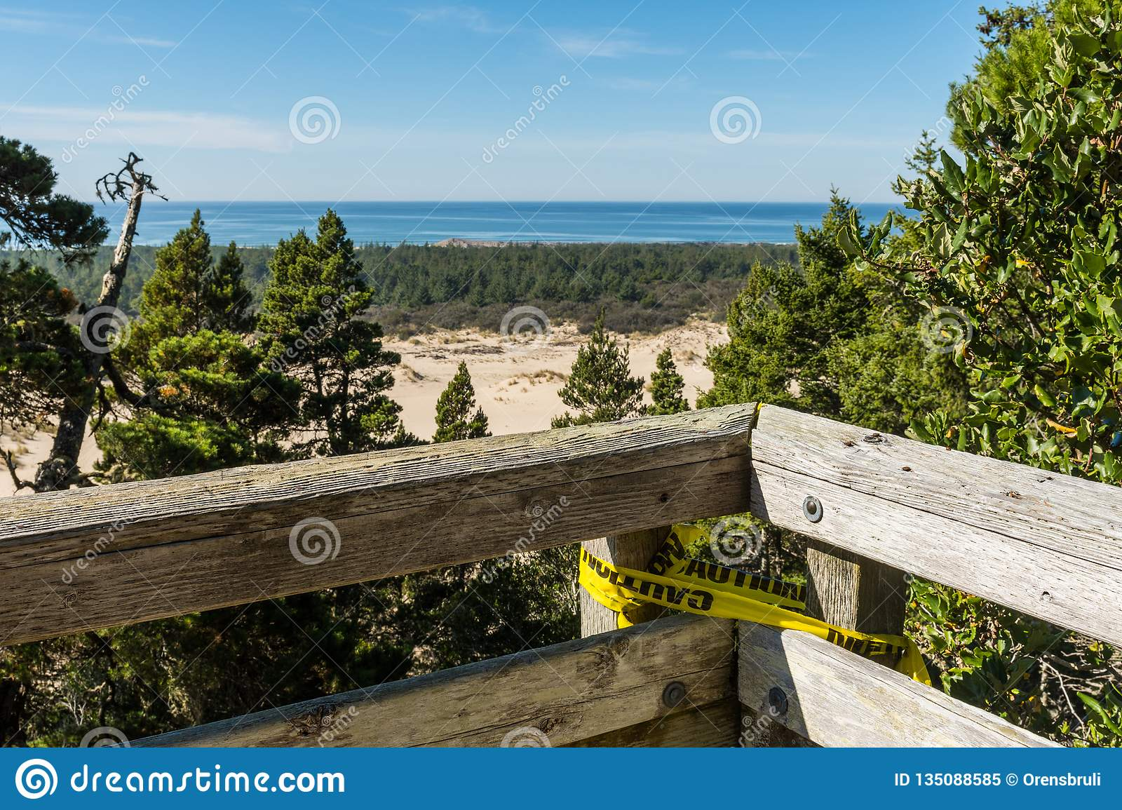 The sand and coastline from a high point of view over the Oregon dunes
