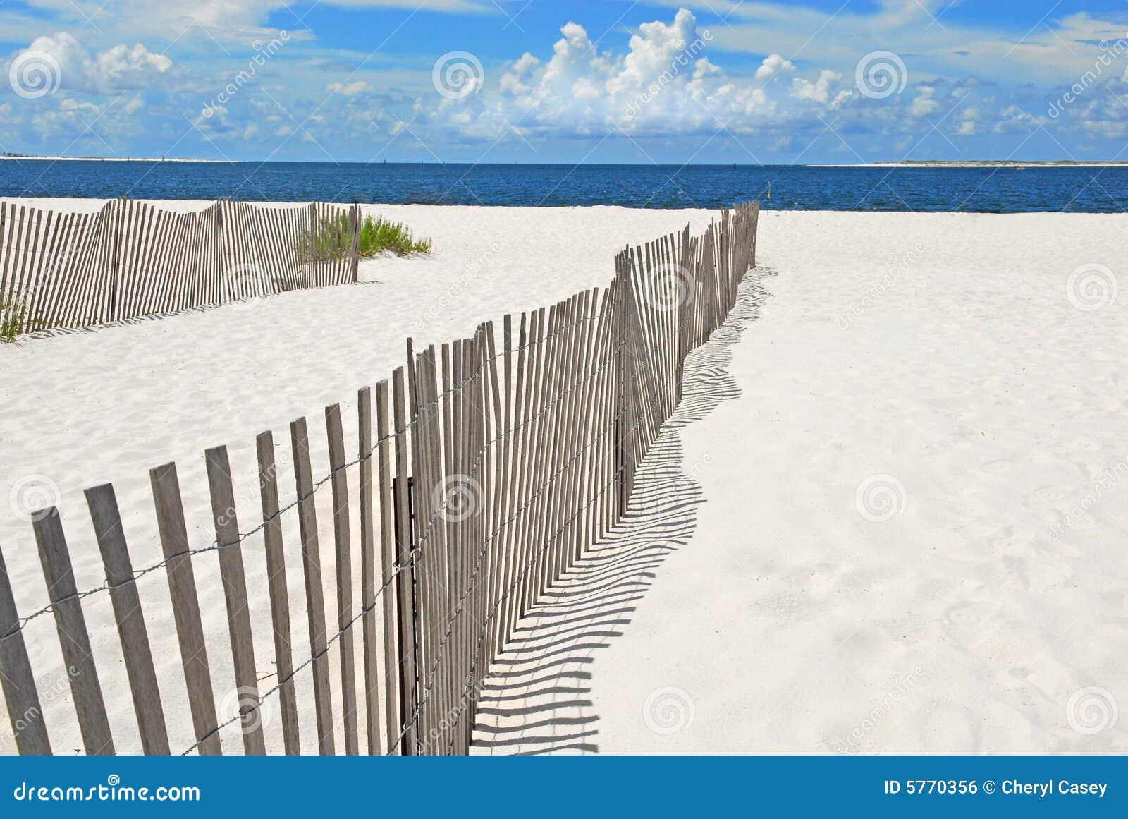 Sand Dune Fences On Beach Royalty Free Stock Image - Image ...