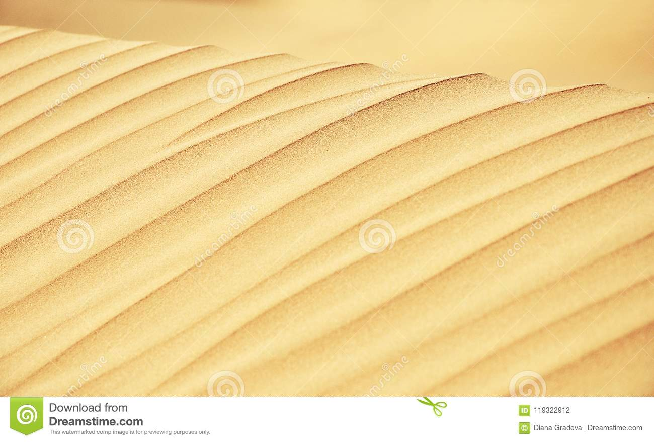 Sand Dune Lines Close Up