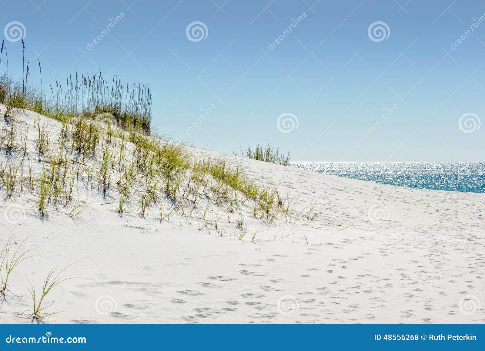 Sand för högt område för dyn dynamisk