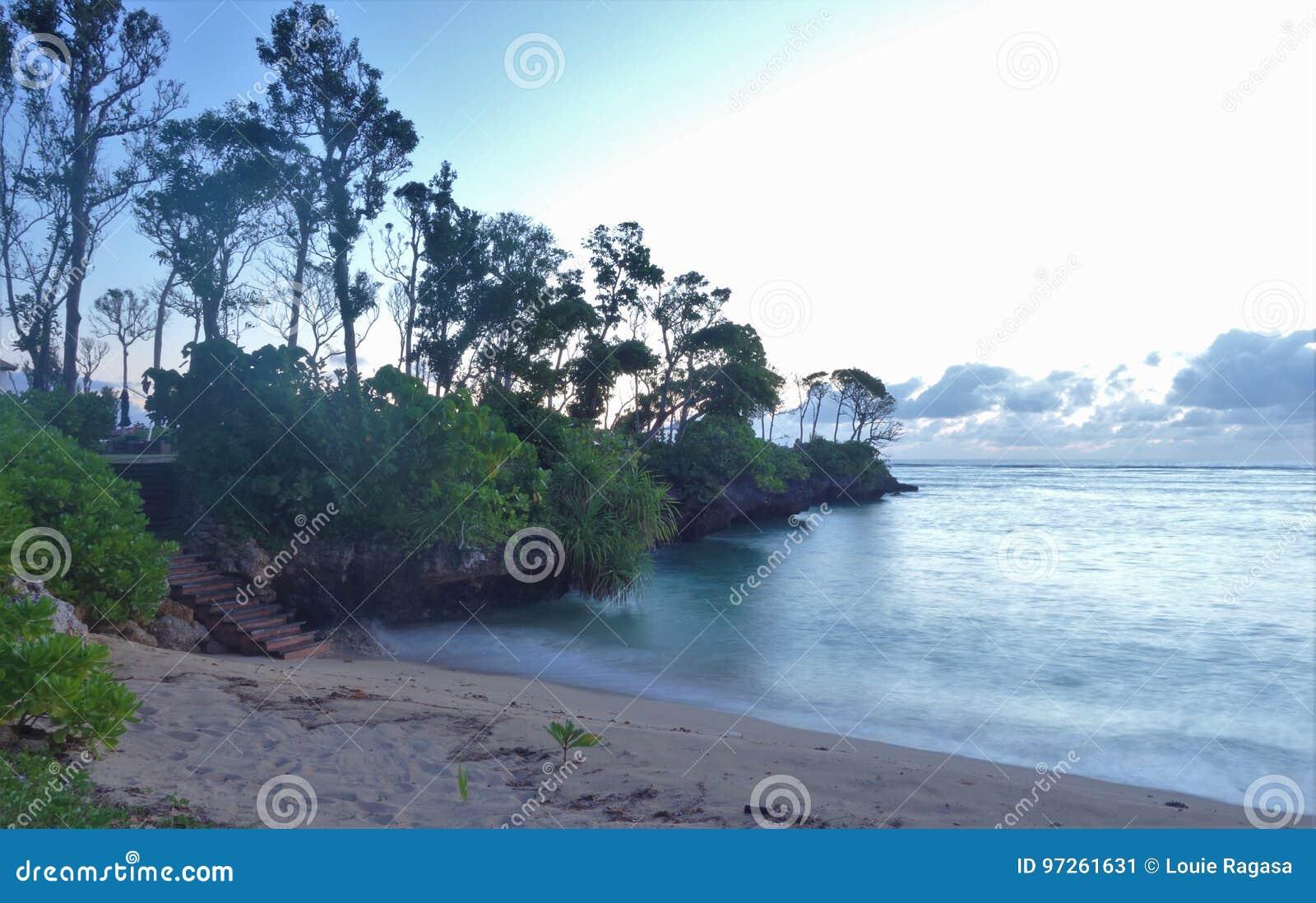 Sand, hav, himmel och träd