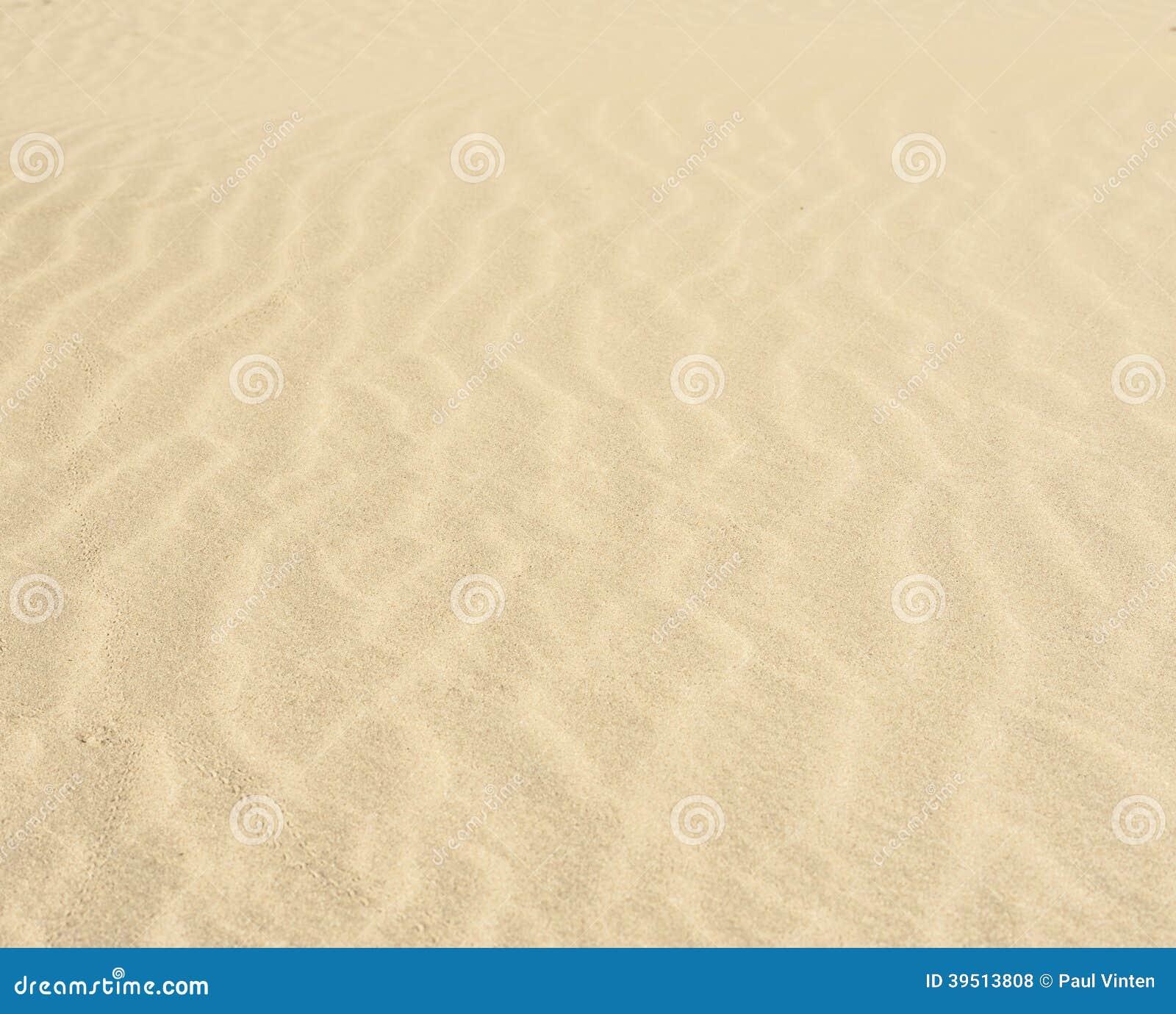 Sand ripples in a desert