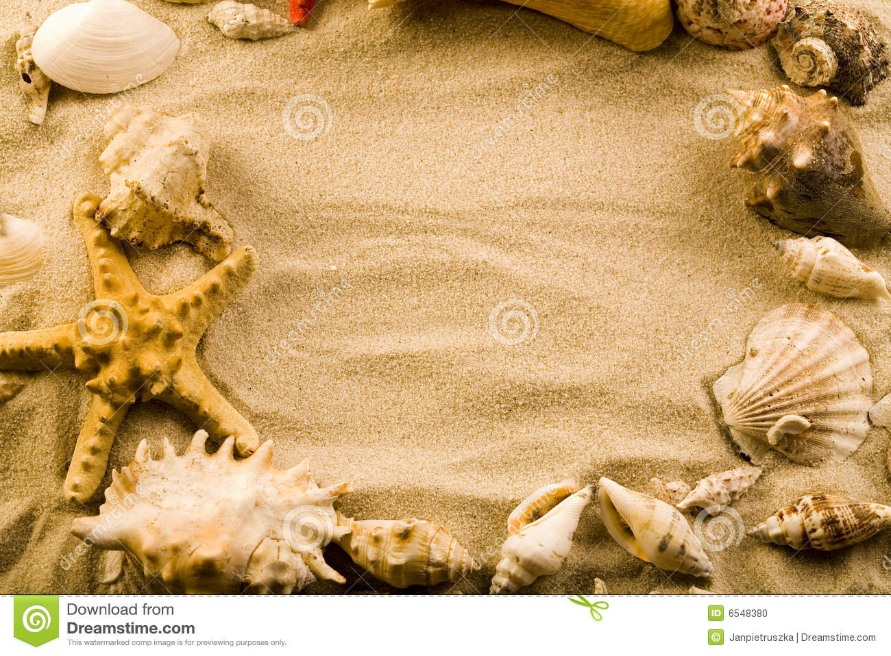 sand and seashells frame