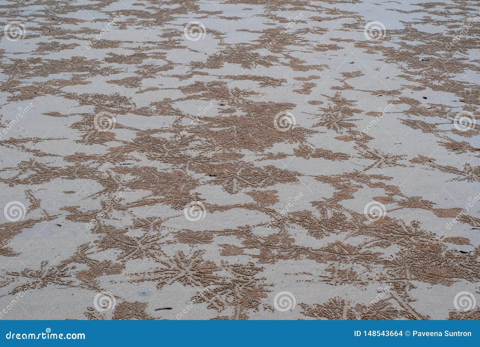Sand-Strand durch das Meer