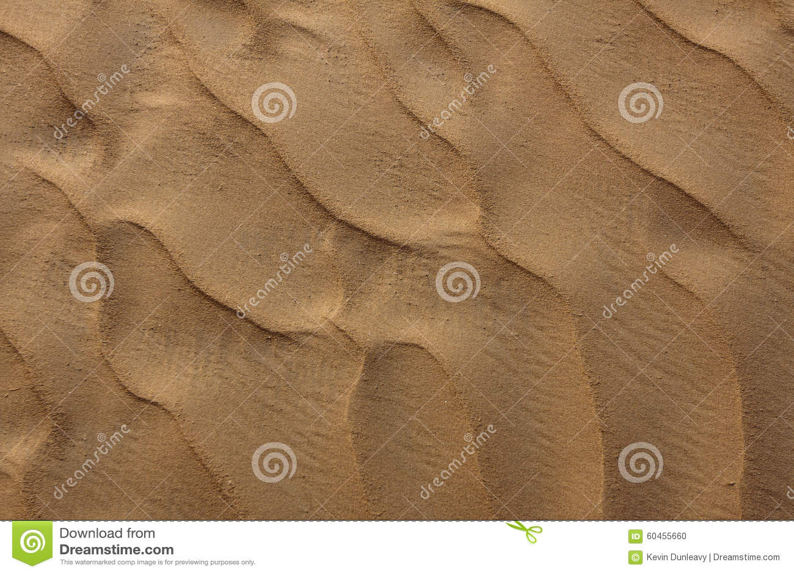 Sanddüne-Kräuselung in der Wüste