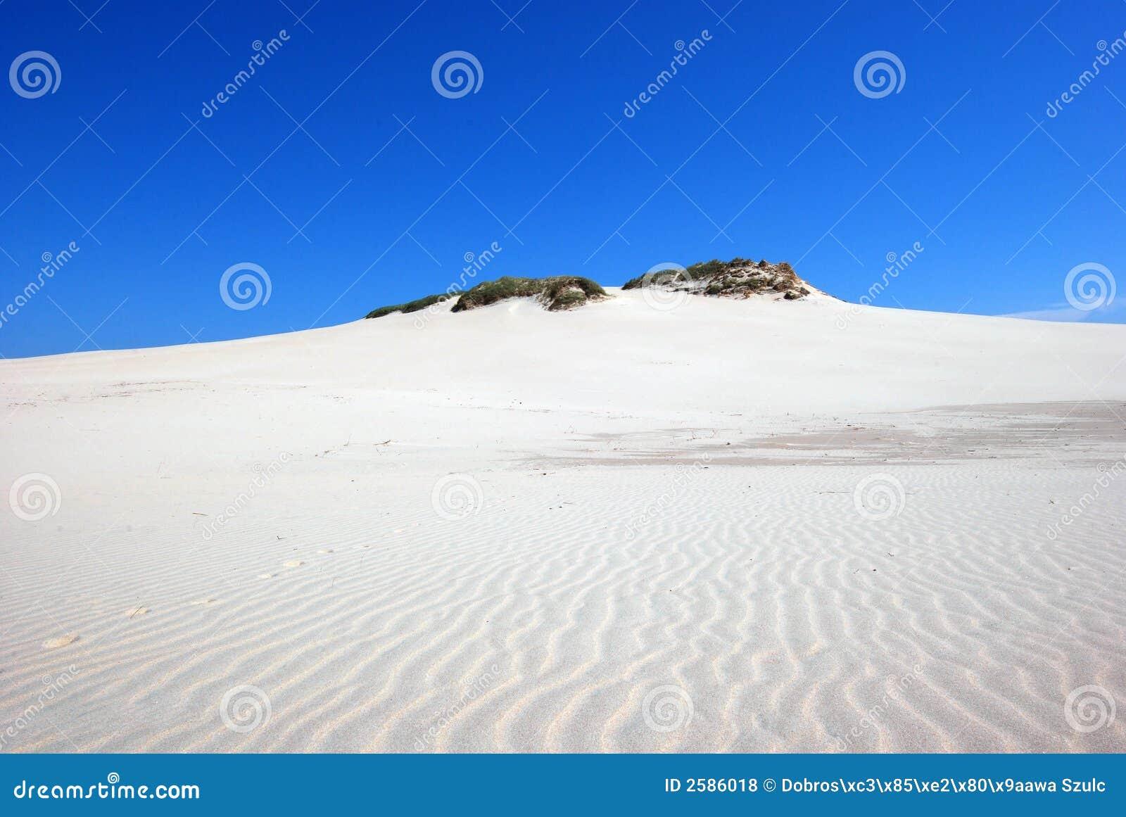 Sanddünen auf der Wüste