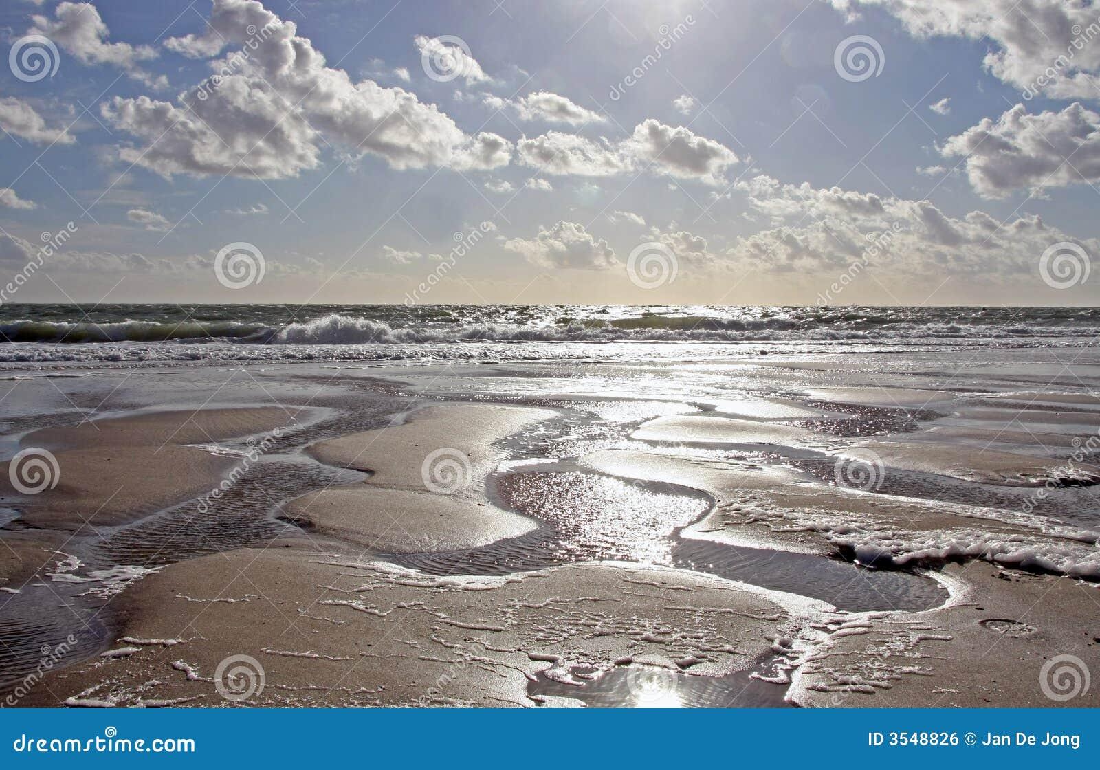 Sandhavssun