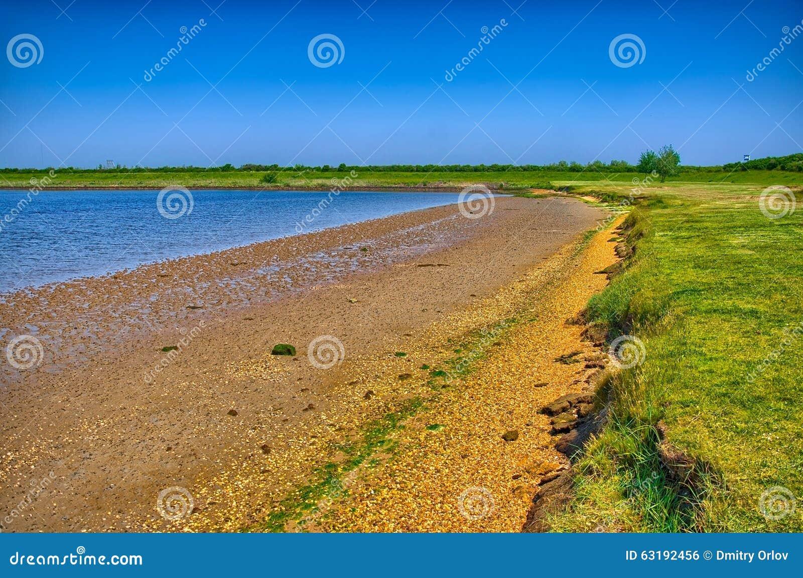 Sandig kust med grönt gräs på solig dag, Holland