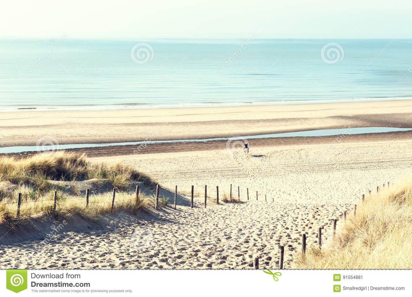 Sandiga dyn på havskusten i Nederländerna