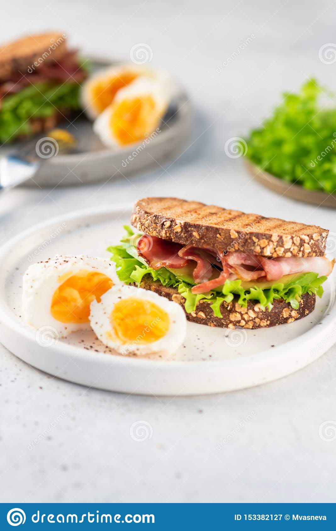 Sandwich with bacon, black bread, salad on plate