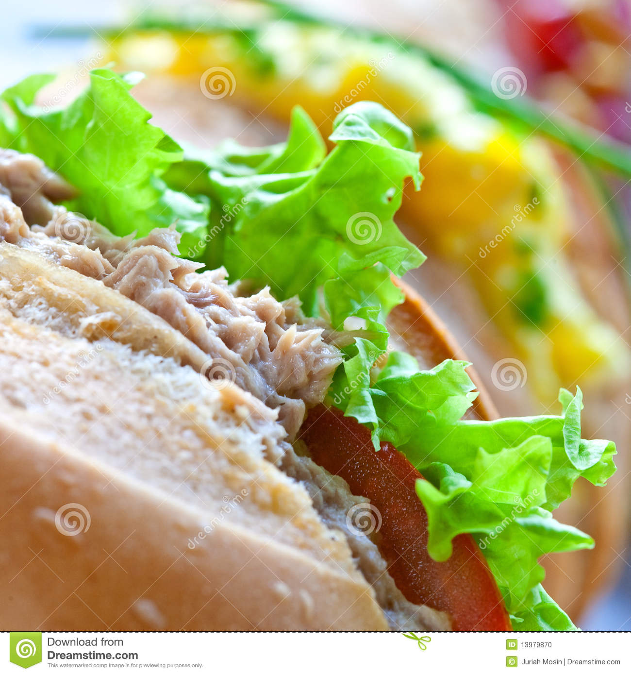 Sandwich rolls with egg tuna and salad stock photo for Tuna and egg sandwich