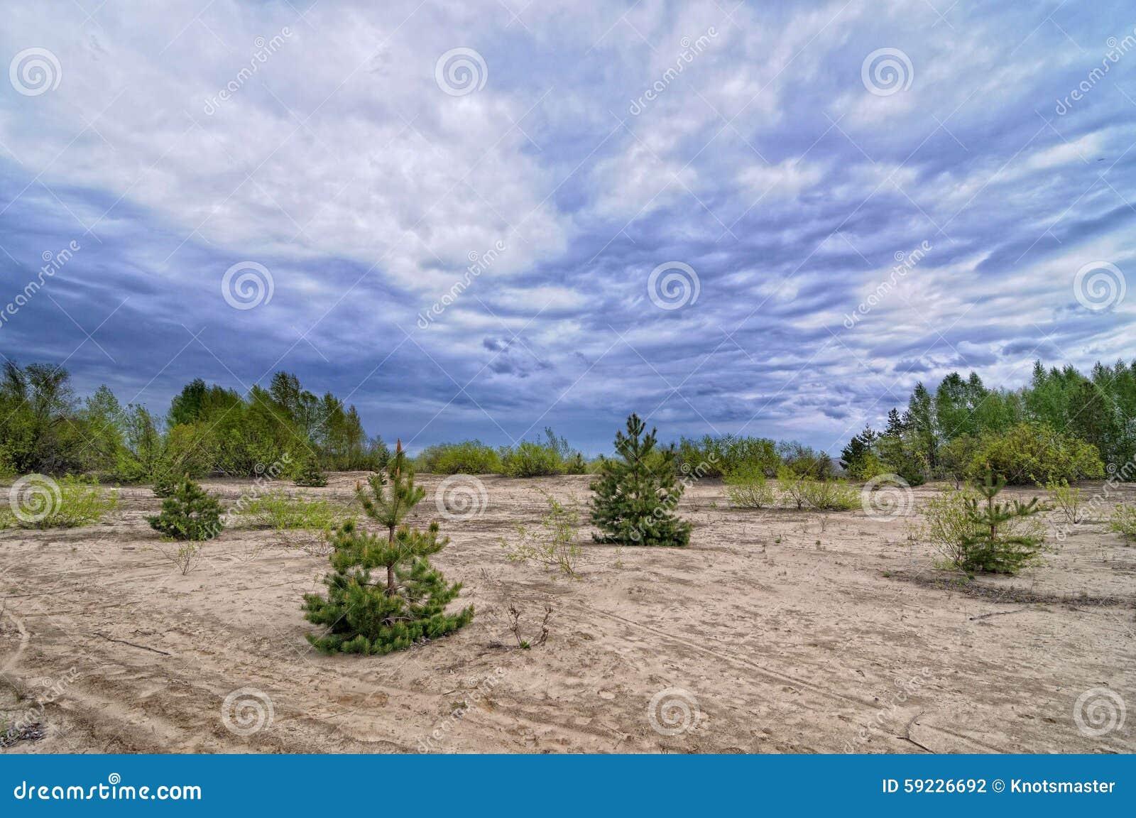 Download Sandy Beach foto de archivo. Imagen de cubo, azul, aire - 59226692