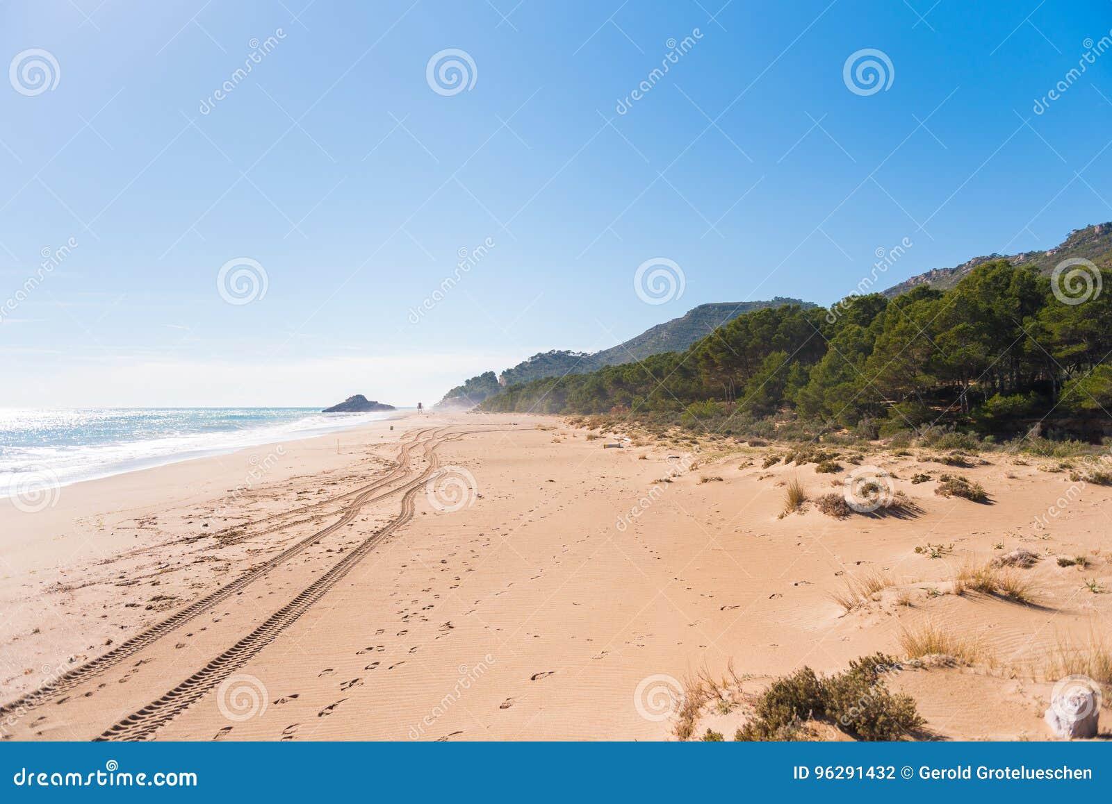 Sandy Beach Beach Playa Torn Kopieren Sie Raum für Text