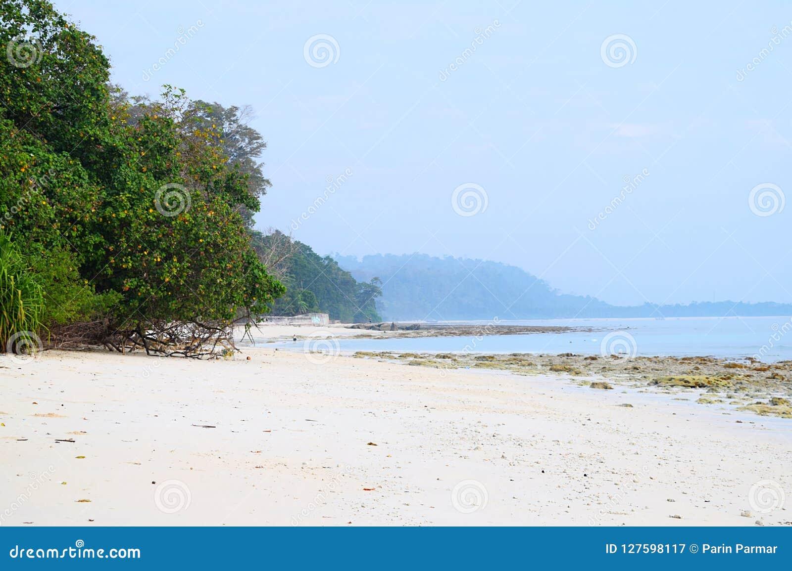 Sandy Beach blanco prístino y tranquilo con los árboles del mangle con Azure Sea Water y el cielo claro - Kalapathar, Havelock, A