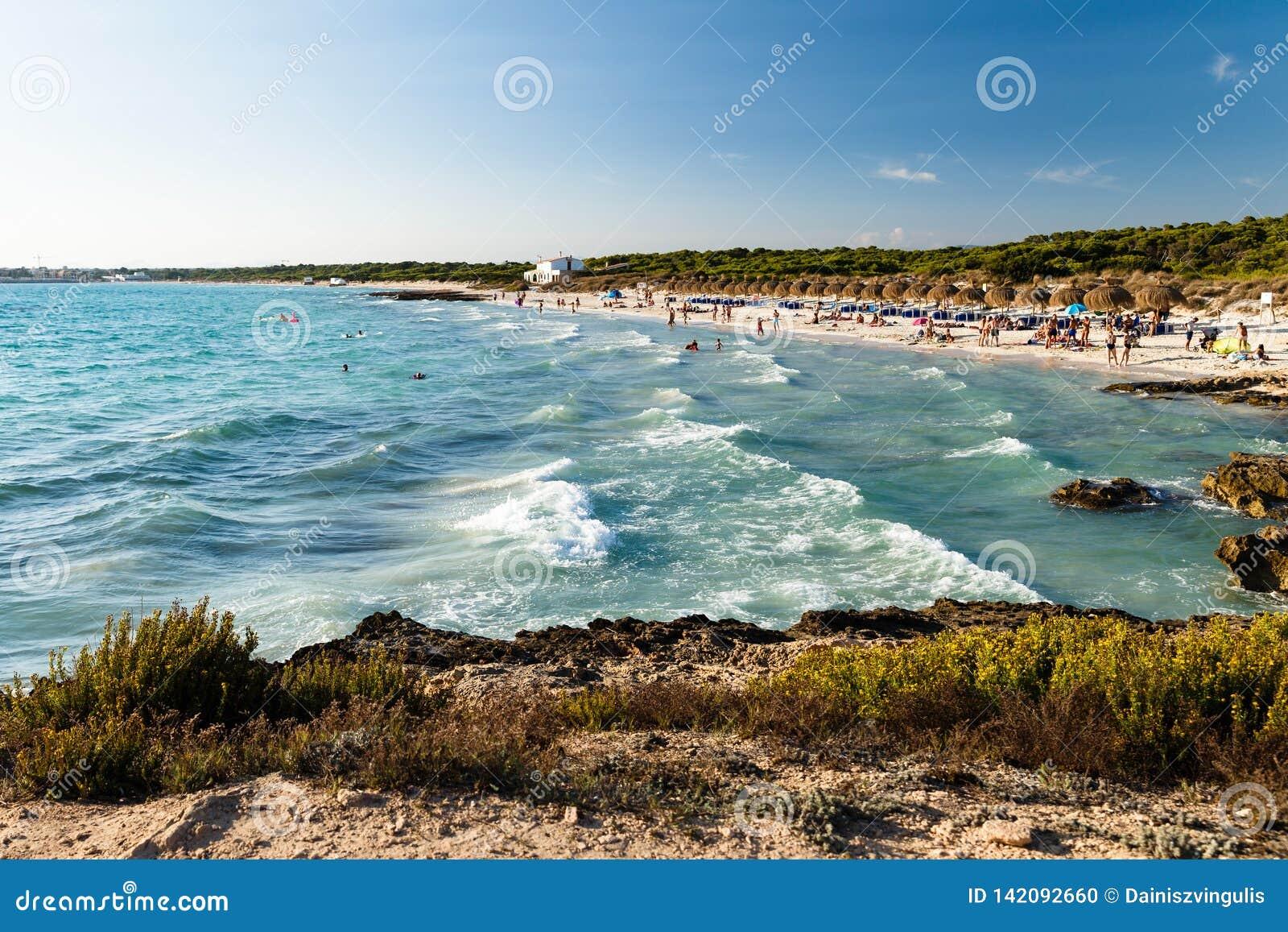 sandy beach with white sand