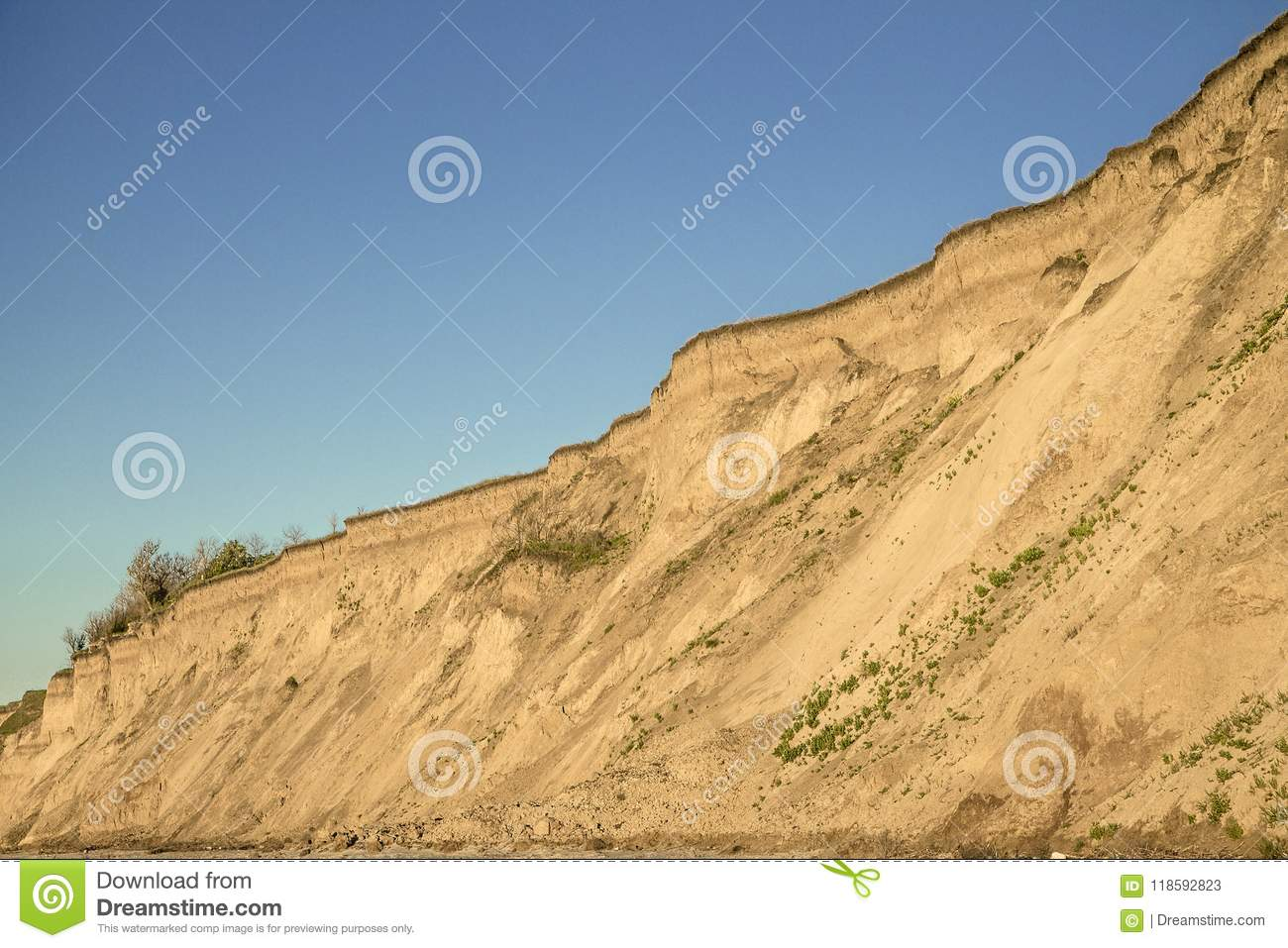 Sandy clay soil vertical breakage with plant roots and small isolated vegetation. Blue sky. Sea coast behind the shot