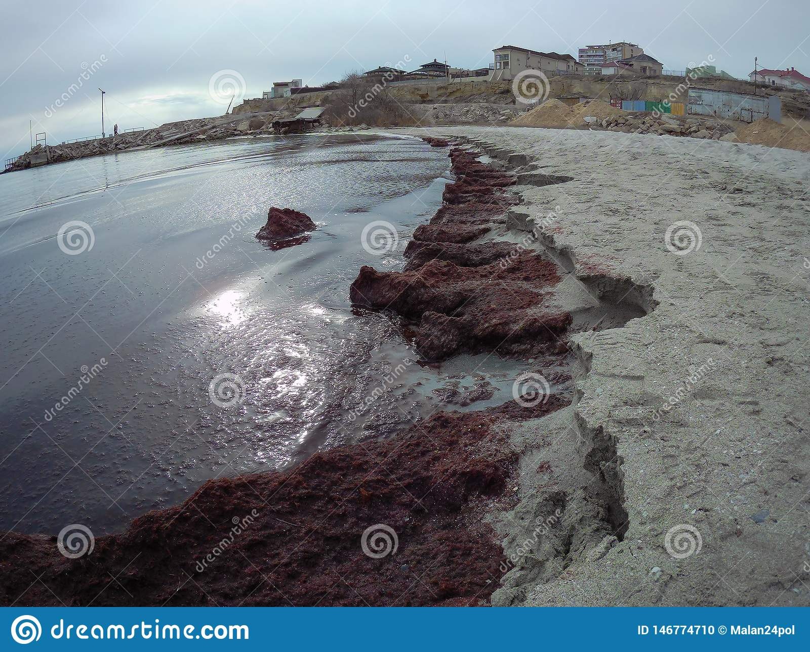 Sandy coast of the Caspian Sea