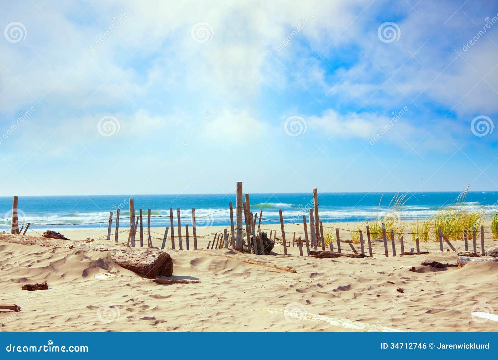 Sandy Ocean Shoreline Dunes Stock Image