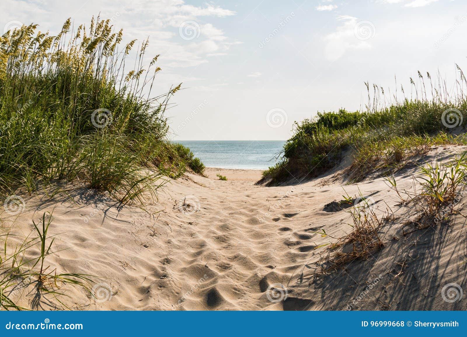 Sandy Pathway zu Coquina-Strand am Nags-Kopf, North Carolina