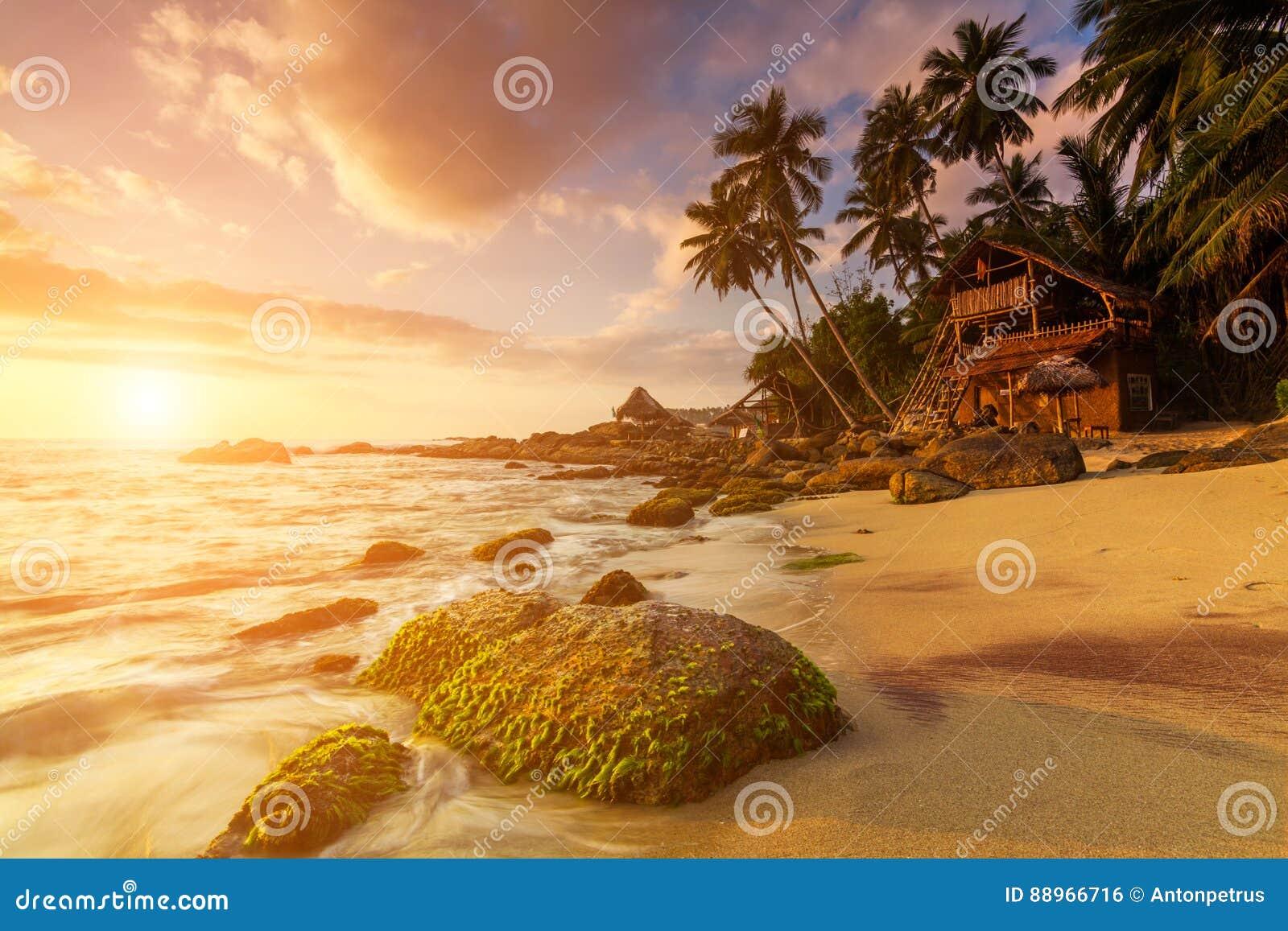 Sandy-Strand an der Dämmerung Sri Lanka