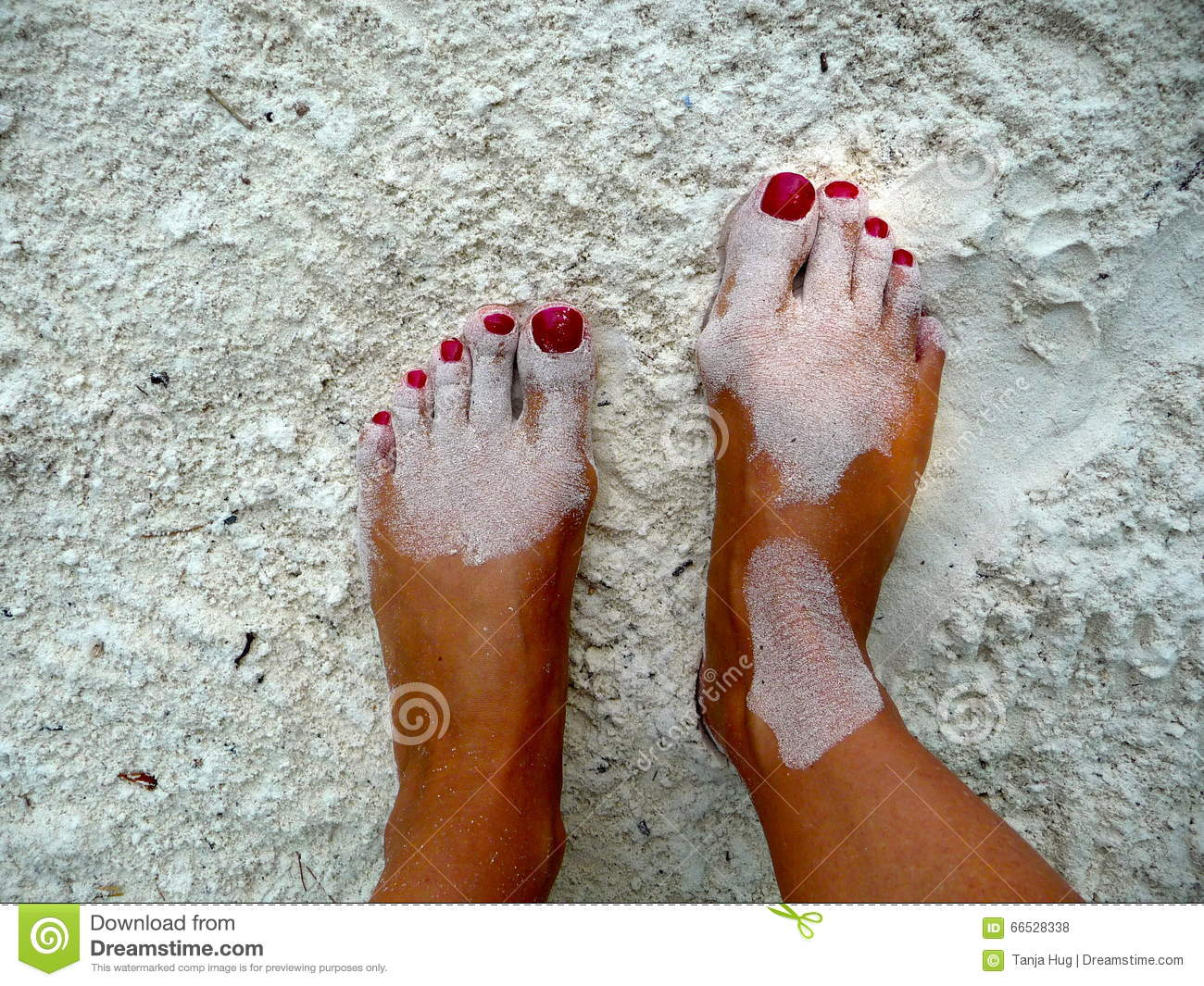 sandy women feet stock photo. image of white, woman, covered - 66528338