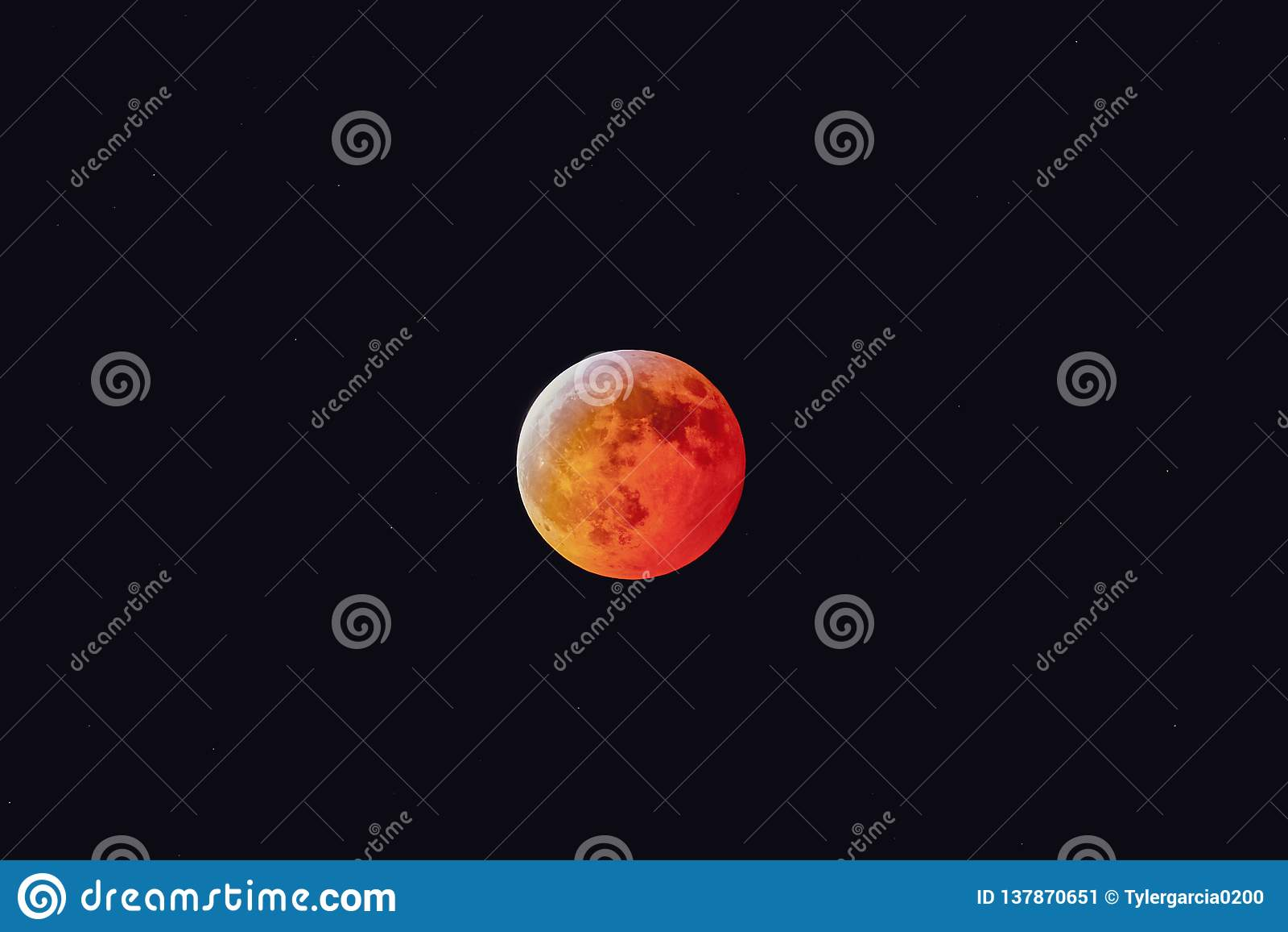 Sang superbe Wolf Moon January 2019 21ème