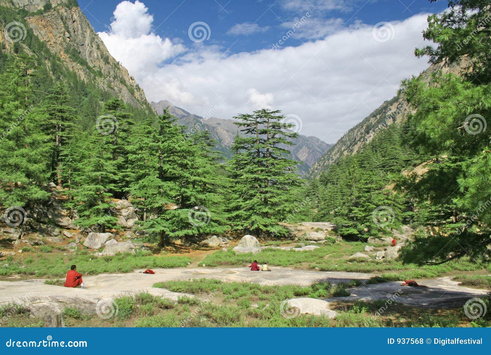 Sannyasins que meditating dentro zazen em escalas de montanha himalayan